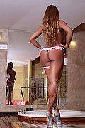 Roma Trans Leonna Pantera 329 7031886 foto 17