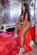 Roma Trans Leonna Pantera 329 7031886 foto 27