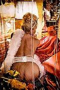 Pompei Trans Trans Evolution 391 1863087 foto hot 16